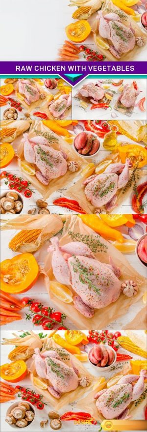 Raw chicken with vegetables 6X JPEG