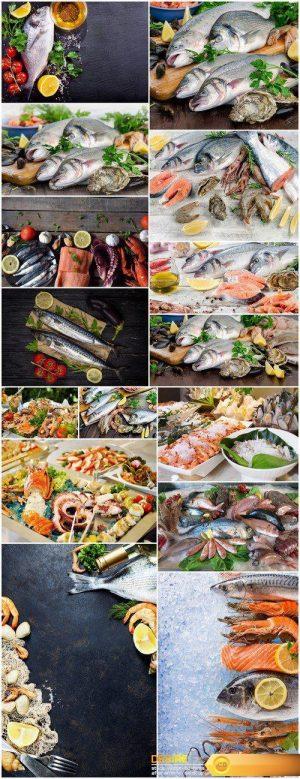 Raw seafood Healthy diet eating 15X JPEG