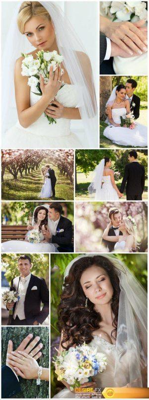 Elegant bride and groom, wedding, family