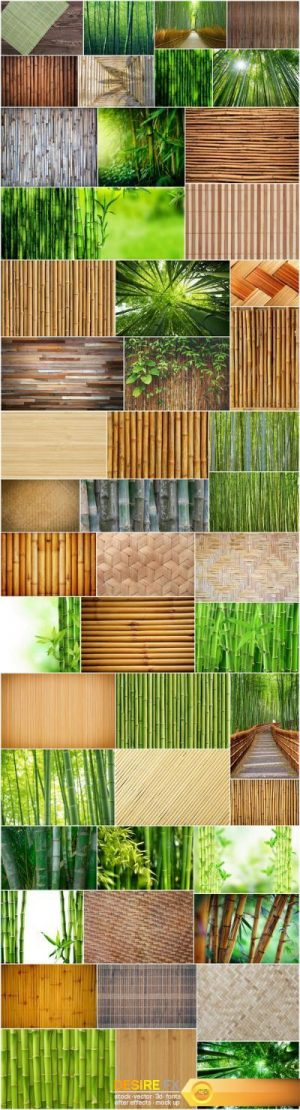 Bamboo Collection – 50xUHQ JPEG