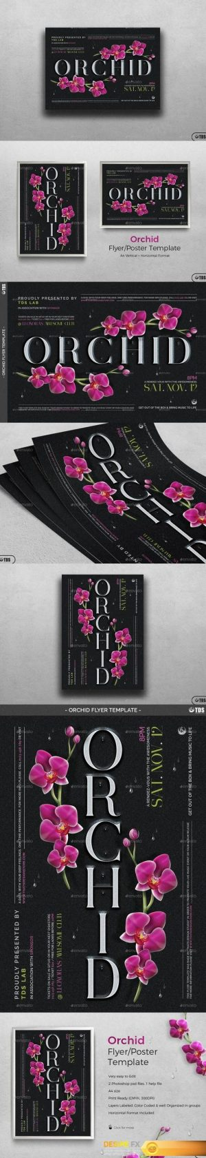 Orchid Flyer Template 19375664