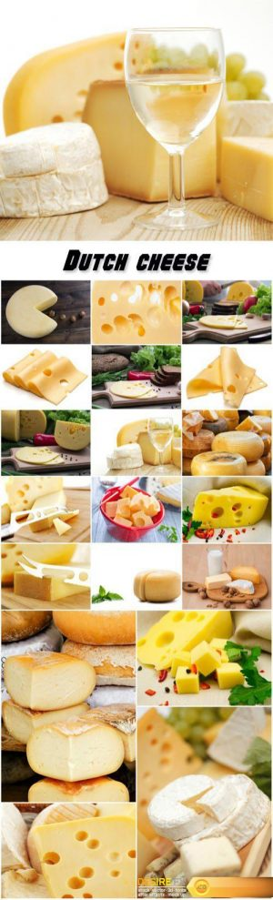 Collection of dairy products, fresh cheese