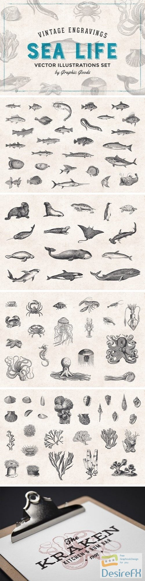 photoshop - Fishes & Sea Life Engravings Set - 1192599