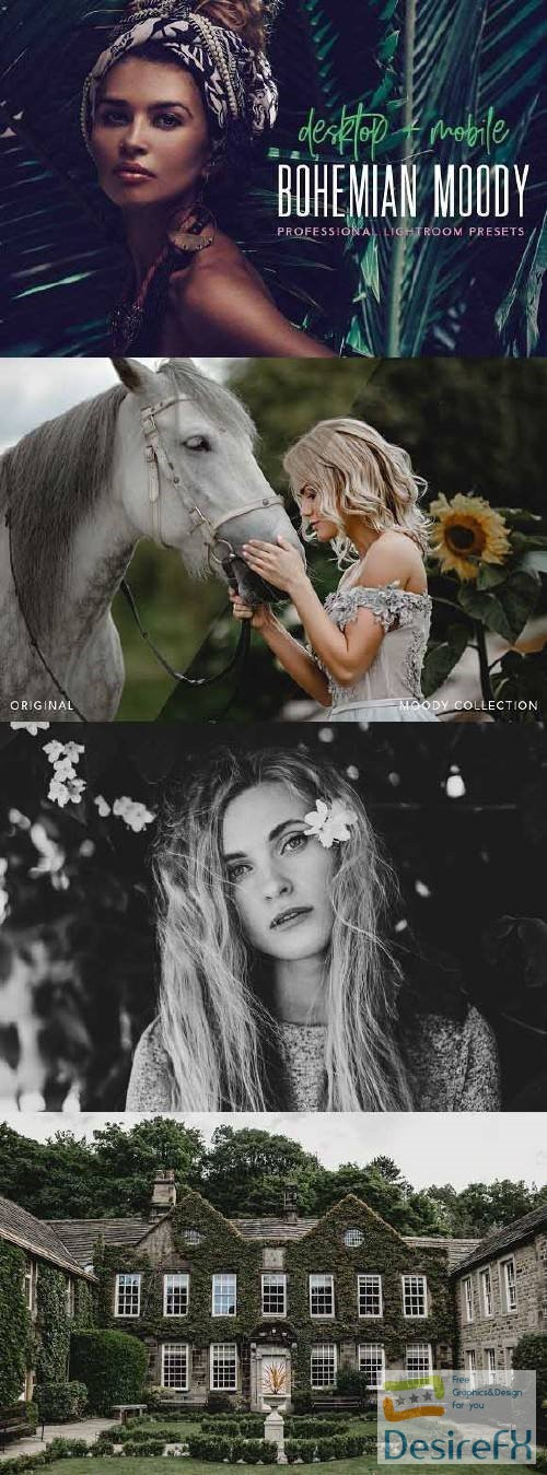 photoshop - Moody presets for Lightroom + mobile 2735963
