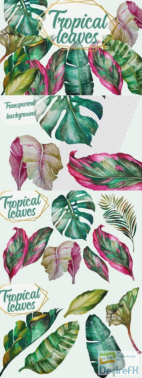 stock-images - Tropical Greenery, Tropical Leaves - 2661764