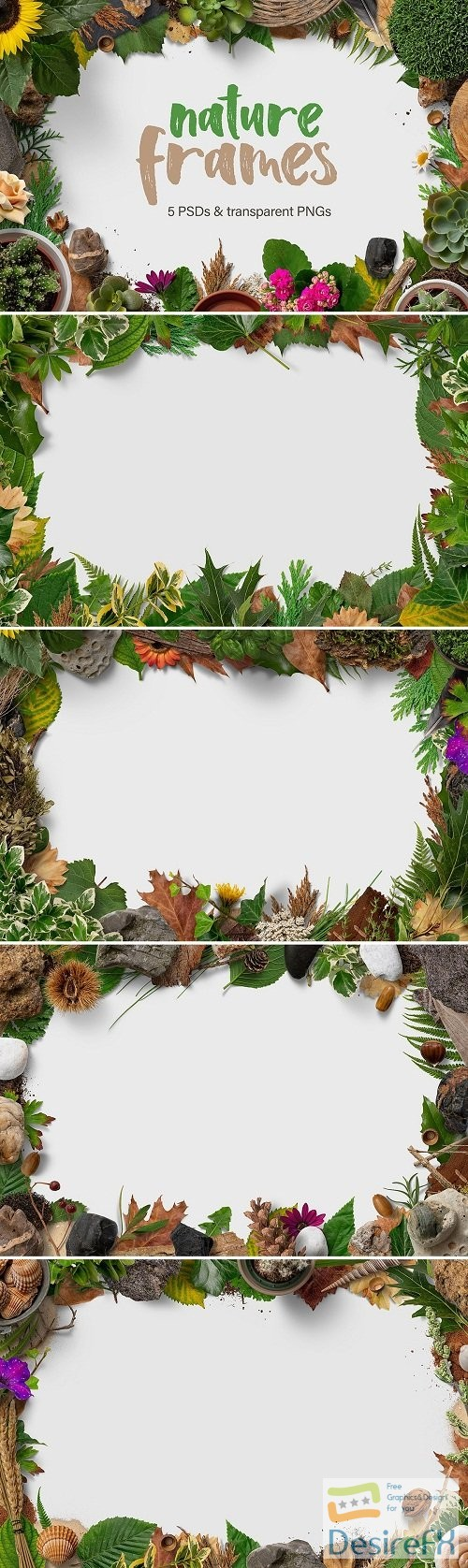 photoshop - 5 Nature Frames - 3083384