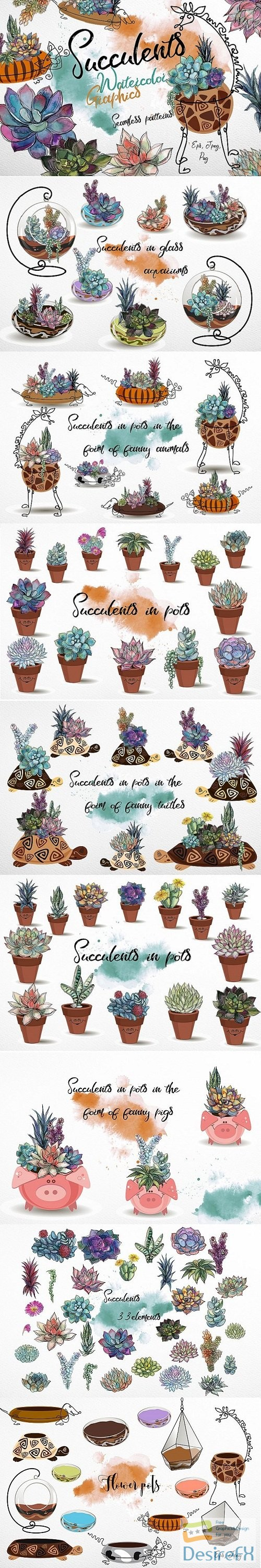 photoshop - Succulents. Watercolor. Graphics - 173334