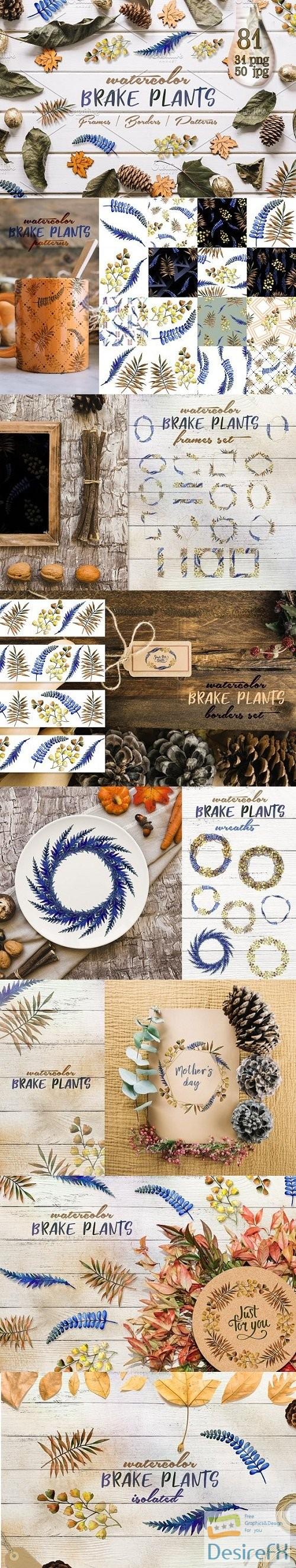 stock-images - Brake plants PNG watercolor set - 3060007