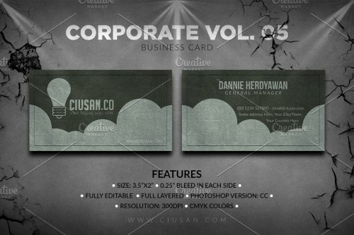 CreativeMarket - Corporate Business Card Vol. 05 3165437
