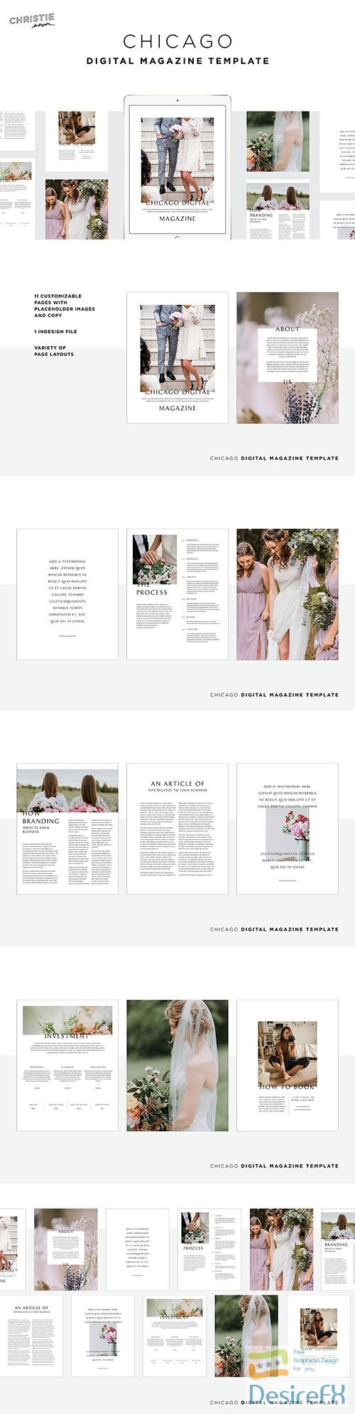 Chicago Digital Magazine Template 3736739