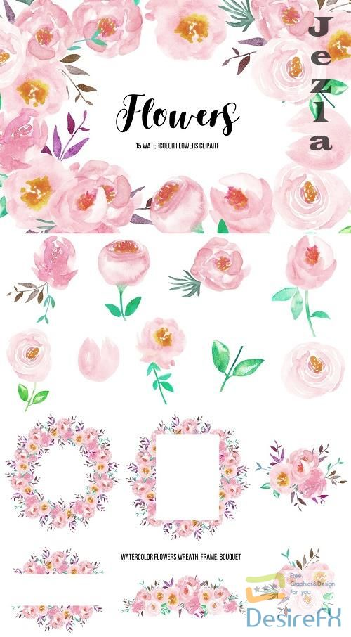 Watercolor Flower Peonies Clipart - 4746986