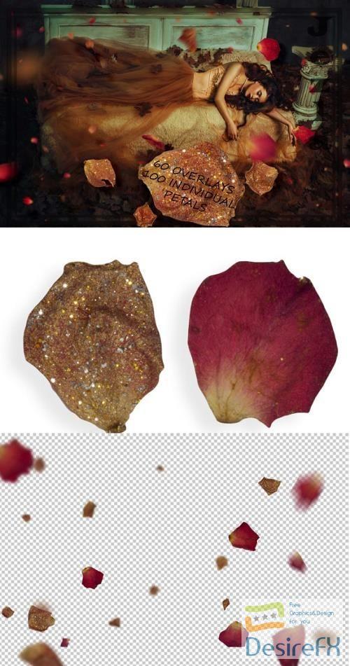 Golden & Red Rose Petals Overlays