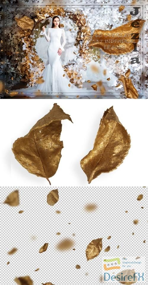 Golden Rose Leaves Overlays