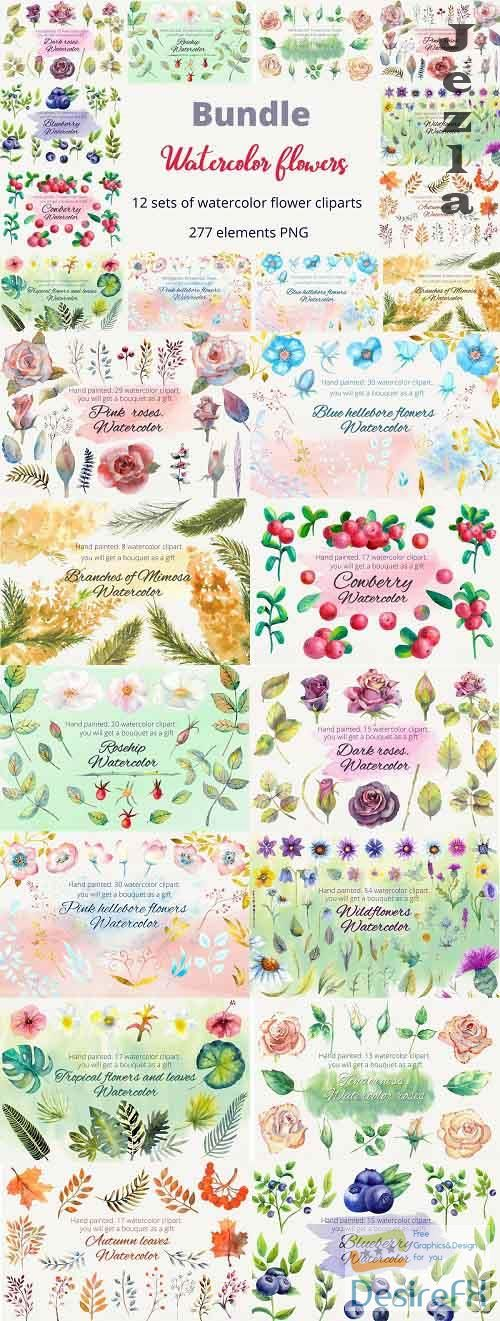 Bundle. Watercolor flowers. Clipart - 642413