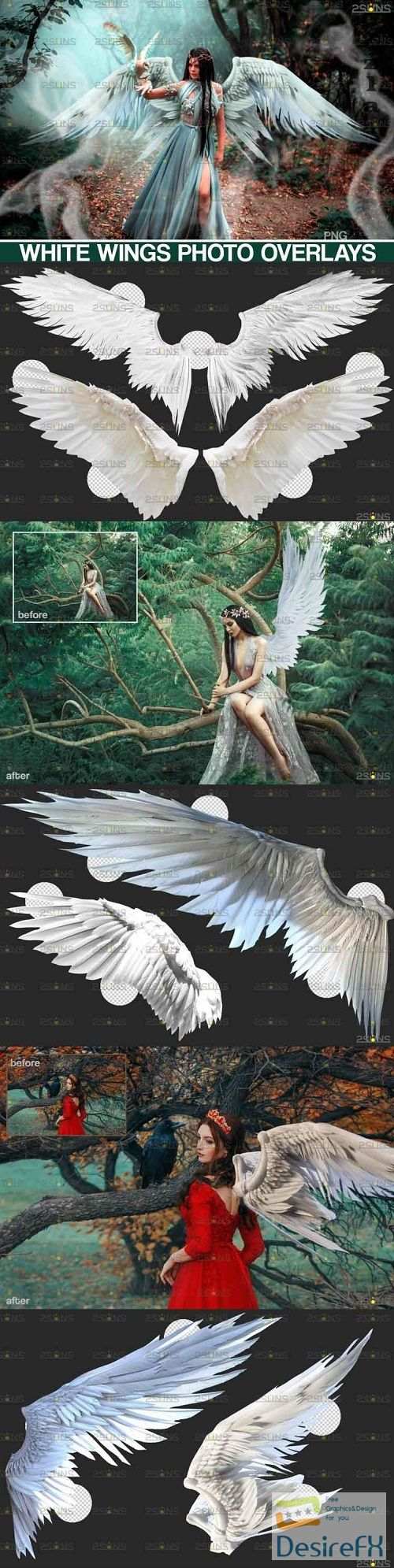 Realistic White Angel Wings Photoshop Overlays  - 644525