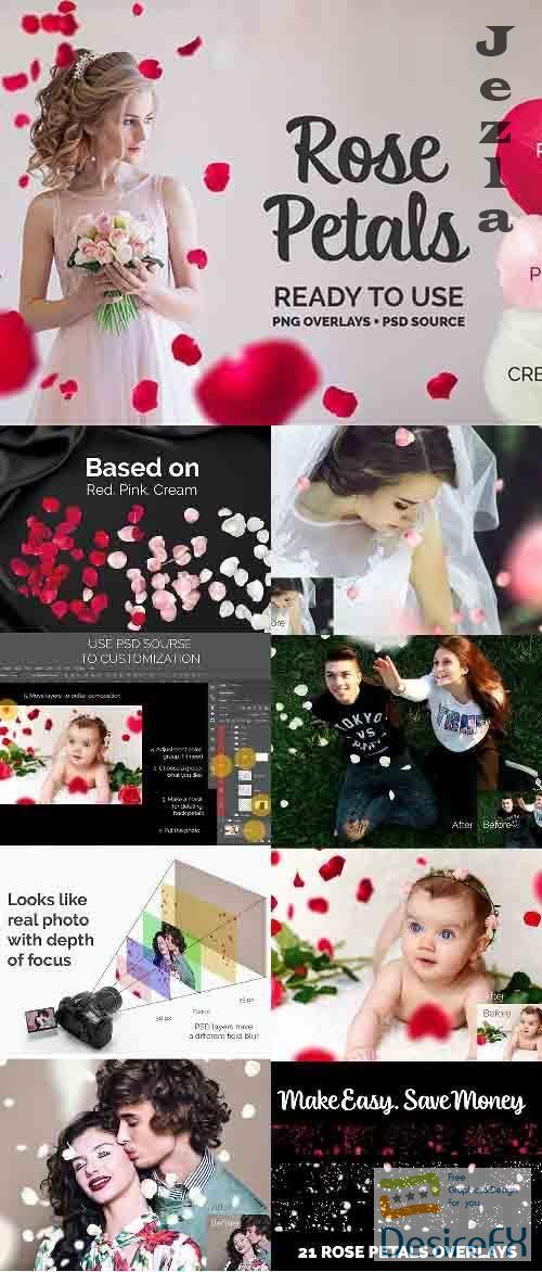 21+ Rose Petals Photo Overlays - 27017694
