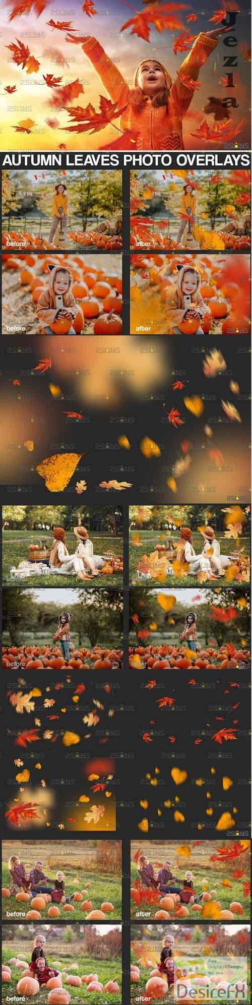Autumn leaf overlay & Photoshop overlay Fall overlay - 895365