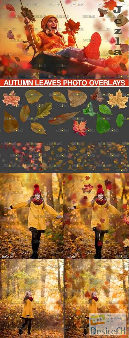 Autumn overlays, Leaf clipart, realistic leaf photo overlay - 952781