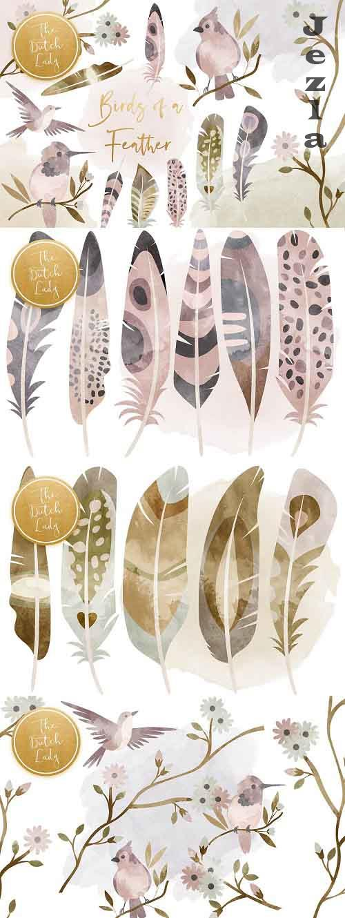 Birds & Feathers Clipart Set - 5495528