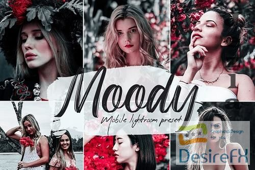 Moody Lightroom Presets - 5607895