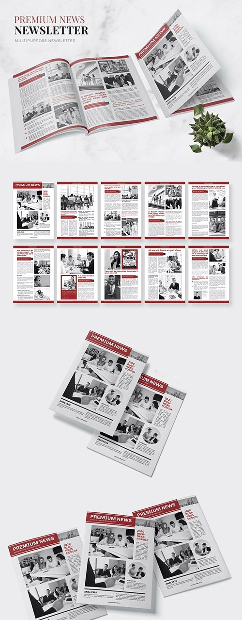 Premium News Newsletter
