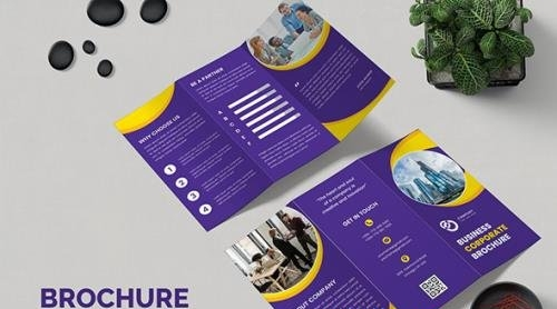 Brochure Trifold Business Marketing