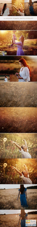 40 Golden Summer Photo Overlays Collection
