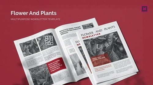 Flower and Plants - Newsletter Template