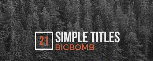Simple Titles 20137446