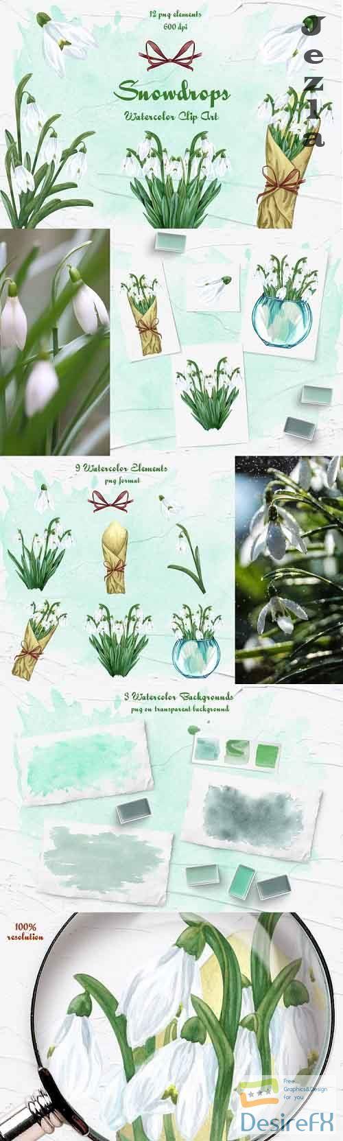 Snowdrops Watercolor Clipart - 1087071
