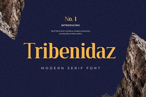 Tribenidaz Serif Display Font