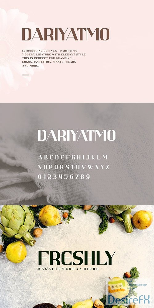 Dariyatmo Sans Serif Font 5826167