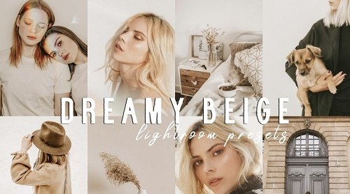 Soft Warm Film Dreamy Beige Presets - 5330905