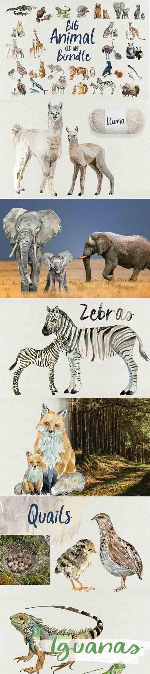 Big Animal Clip Art Bundle - 6016251