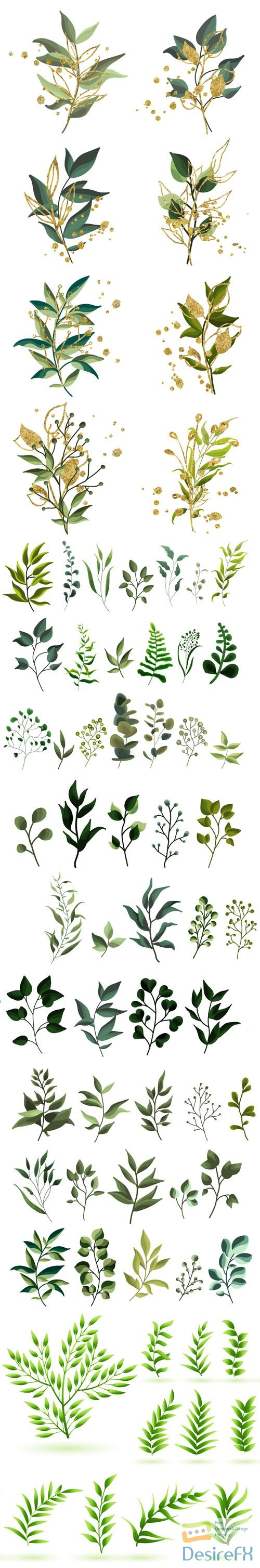 Collection of Plants, Leaves and Flowers Vector Templates
