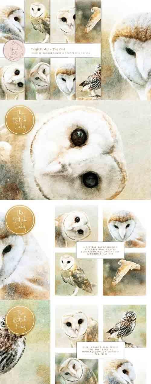 Digital Paintings The Owl - 6044812