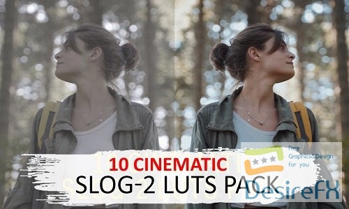 10 Cinematic Slog-2 Luts - 5525741