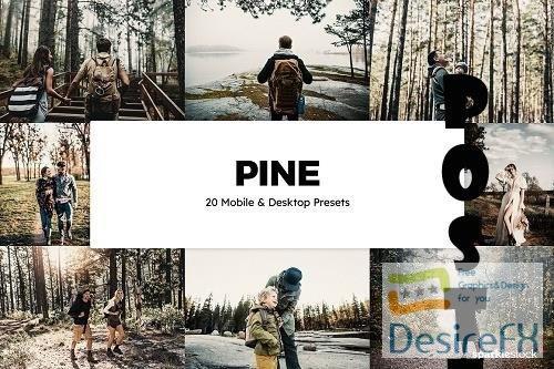 20 Pine Lightroom Presets & LUTs - 6137117