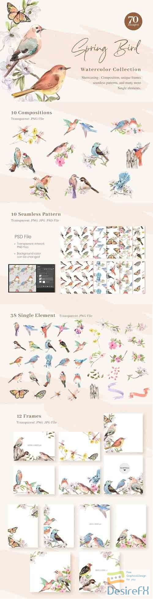 Spring Birds of Spring Watercolor - 6114931