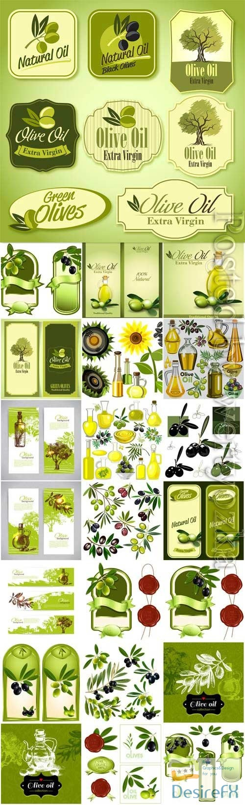 Labels and backgrounds with olives, olive oil in vector