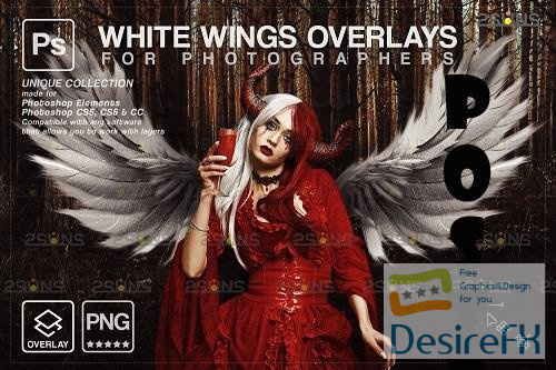Realistic White Angel Wings Photoshop Overlays V1 - 1583893