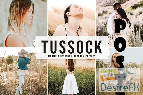 Tussock Pro Lightroom Presets - 6590756